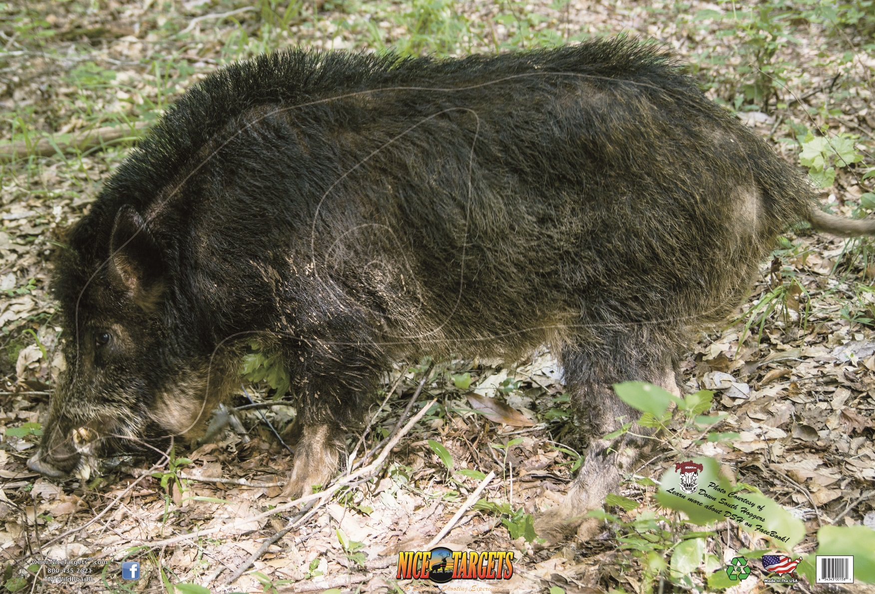 """OUT OF STOCK Wild Boar Broadside Left 28"""" x 40"""" 100ct Reusable Box"""