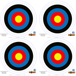 20 40cm Single Spot Color MATTE FINISH Target Pack